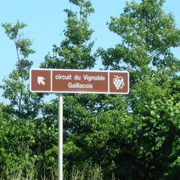 Circuit du vignoble Gaillacois
